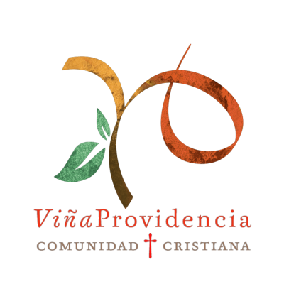 Logo Provi  copia